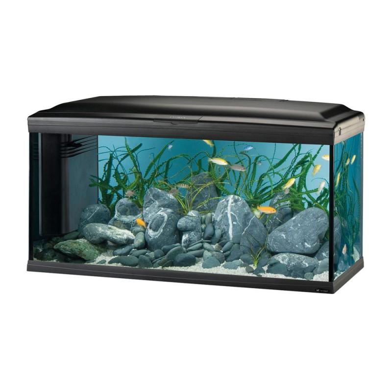Оборудван аквариум CAYMAN 80 Scenic –...